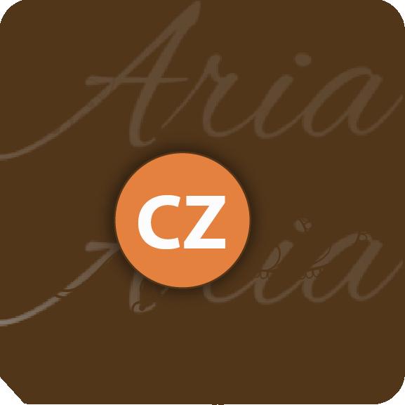 Aria Studios Christine Zupko Nail Hair